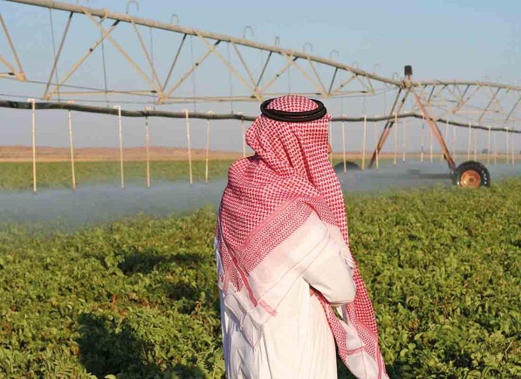کشورهای عربی نظیر عربستان صعودی در حال حاضر در حال بهره برداری مستمر از منابع آب ژرف هستند