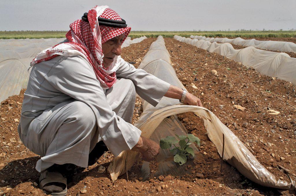 کشور عربستان از پیشرفتهترین سیستمهای آبیاری برای کاهش میزان مصرف آب در بخش کشاورزی خود استفاده میکند   مدیریت مصرف آب مسئلهای که از امروز باید به فکر آن بود