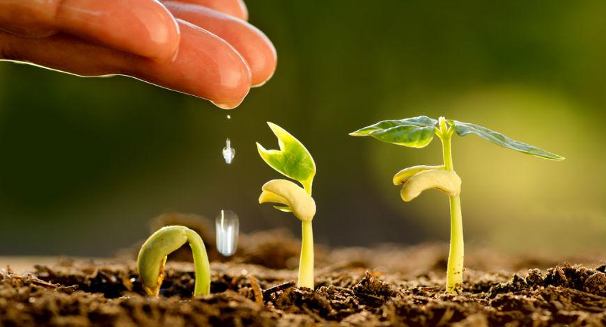 حاصلخیزی زمین و سلامت خاک با اقتصاد چرخشی