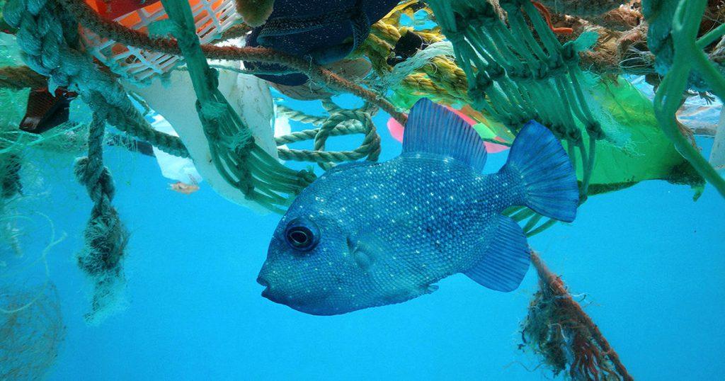 ضایعات پلاستیک در دریا