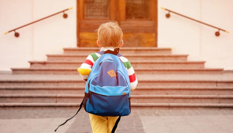 Political Attitudes in Children's Education